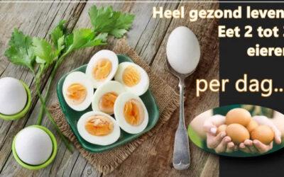 Heel gezond leven: 2 tot 3 eieren per dag..!!