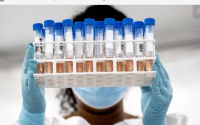Drs. Mario Ortiz Martinez: RIVM houdt belangrijke wijzigingen in PCR test stil en Internationale PCR deskundige & moleculaire geneticus meldt schokkende bevindingen PCR tests aan RIVM.