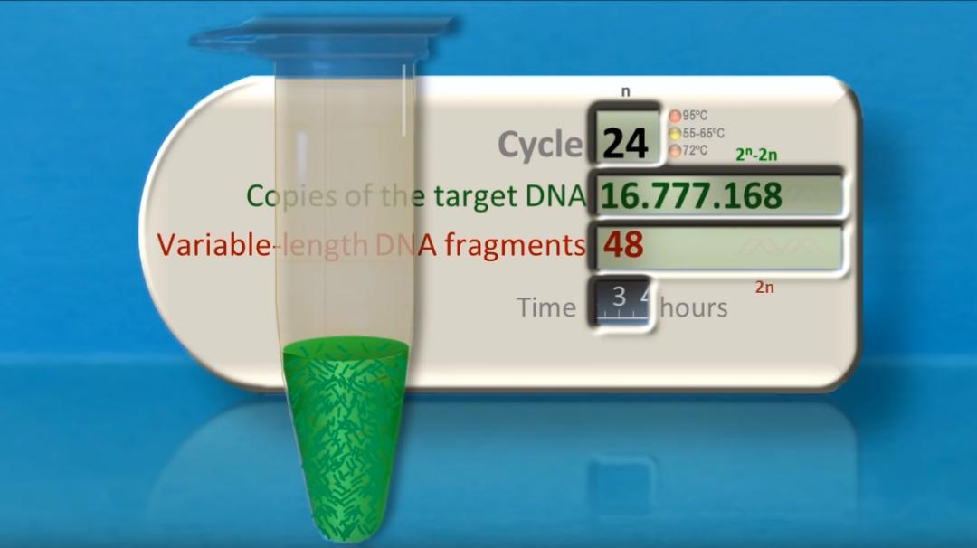 FRAUDE: Hoe de PCR test is verprutst en misbruikt