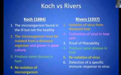 Er zijn goede argumenten waarom ze niet zouden hebben bewezen wat ze beweren te hebben bewezen (SARS-CoV-2); niet met 'Whole-Genome Sequencing' en niet met de (gewijzigde) postulaten van Koch