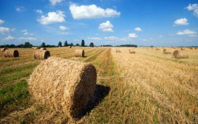 Boeren willen de Sloopregeling voor Nederland stoppen